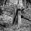 Der Judenfriedhof in Leubsdorf am Rhein. © Tom Rübenach