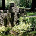 Mehrere Steinkreuze auf dem Soldatenfriedhof in Bad Bodendorf.